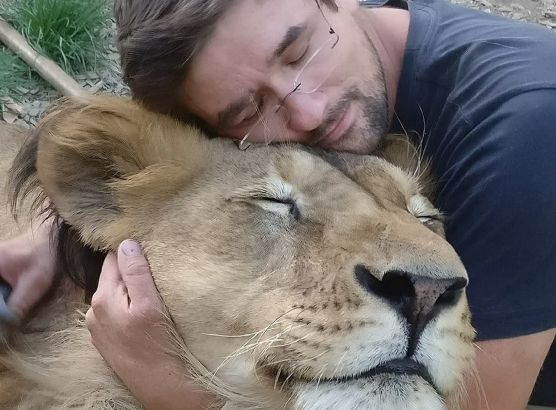 Czech man mauled to death by lion he tried to keep as a pet image