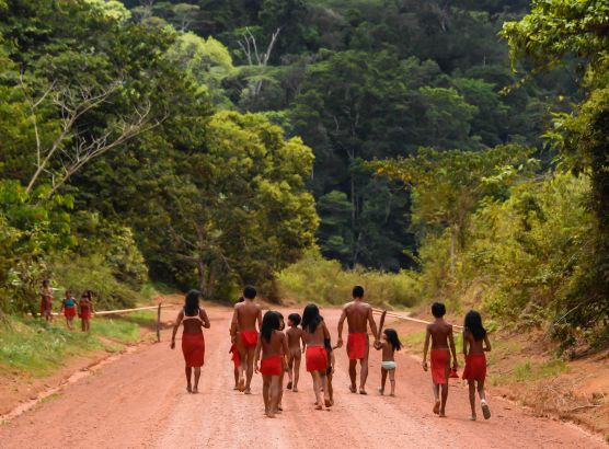 Brazilian gold miners murder indigenous leader in invasion of protected reserve image